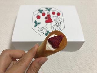 2019.08.01-5オードリー グレイシア.JPG